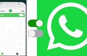 turn off whatsapp